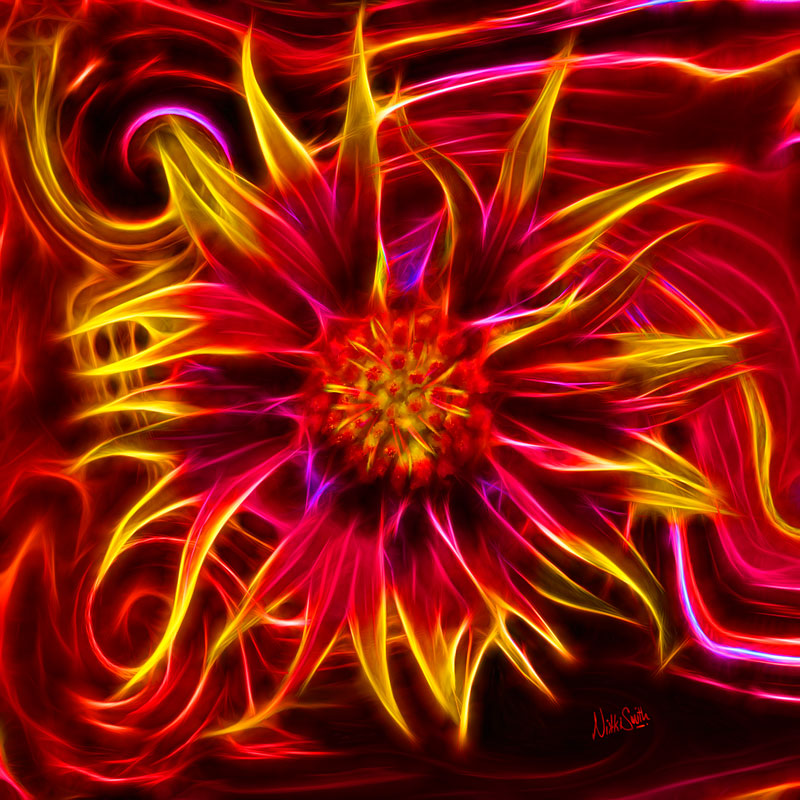Electric Firewheel by Nikki Smith