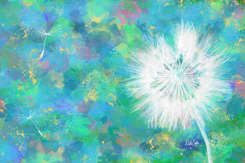 Silverpuff Dandelion Wish, copyright Nikki Smith (prints available)