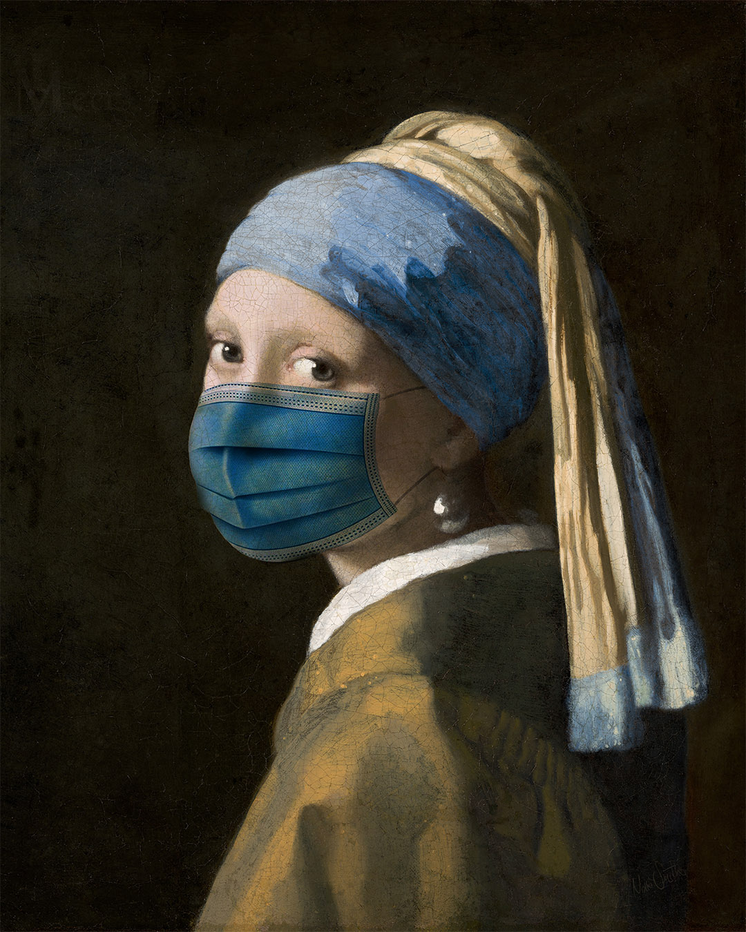 Masked Girl with a Pearl Earring by Nikki Smith and Johannes Vermeer