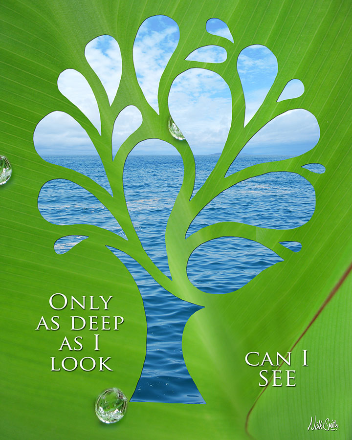 Only as Deep as I Look Can I SEE by Nikki Smith